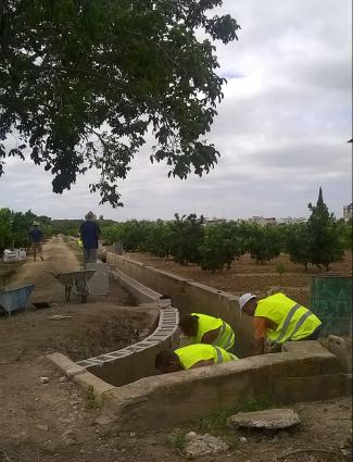 foto paro agrícola programa municipal d'ocupació agrícola  marc vendrell la veu d'algemesí