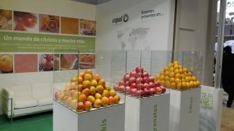COPAL, la Cooperativa Agrícola de Algemesí, en Fruit Attraction ifema feria de madrid