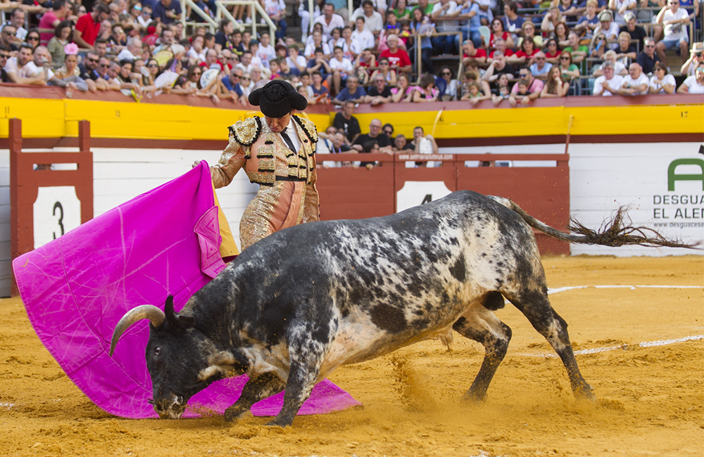 Héctor Gutiérrez Manuel Diosleguarde Pérez Langa cebada gago carlos bueno moises castell agencia prensa2