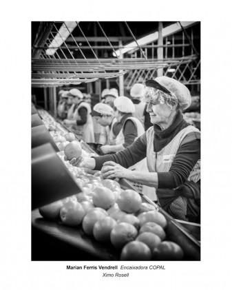 """Exposició fotogràfica """"Dones treballadores"""" al Museu Valencià de la Festa ximo rosell la veu d'algemesi"""