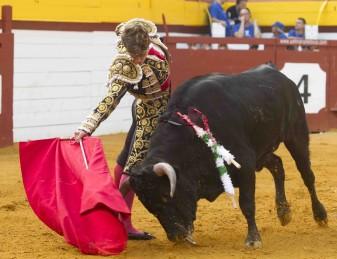 Setmana de bous algemesí Jordi Pérez Aída Jovani Borja Collado Carlos Bueno Moisés Castell La veu d'algemesí