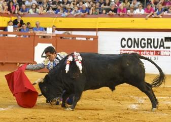 Setmana de bous algemesí Juan Manuel Munera María Domecq  lagunajanda Leo Valadez  carlos bueno moisés castell
