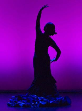 fotografia escenica valencia conservatorio de musica y danza jose moreno gans compañia de danza jose porcel flamenco fotografo escenico moises castell agencia prensa2 fotoperiodismo comunicacion la veu d'algemesi