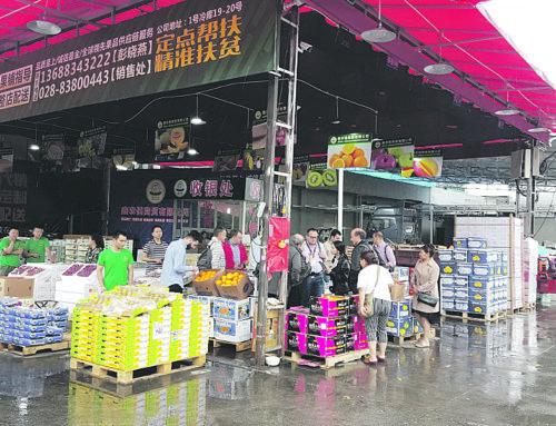 COPAL obri mercat al Sud-est Asiàtic