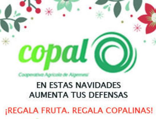 Cistelles de  COPAL per a Nadal