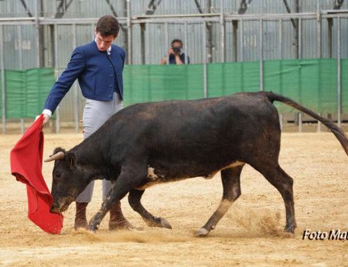 Álvaro Cerezos i Juan Alberto triomfen a Moncada